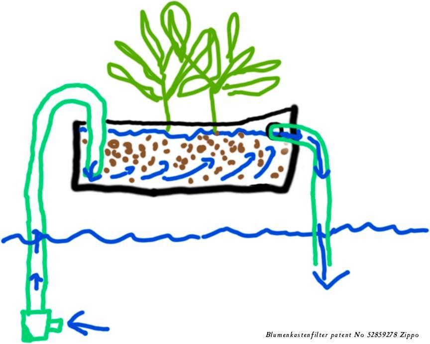 Filter Wasserschildkrote